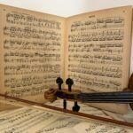 Elige tu violin